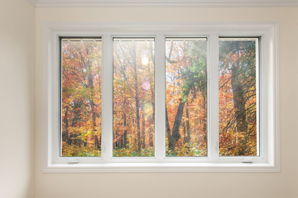 Window with a view of autumn trees